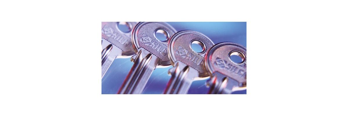 Ab sofort - Schlüsselrohlinge von Silca -